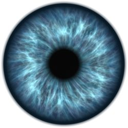 eye-1003315