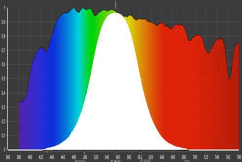 La lumière blanche : c'est la partie visible de la lumière solaire perçue par l'oeil. Elle est représentée par la partie du spectre figurant en blanc