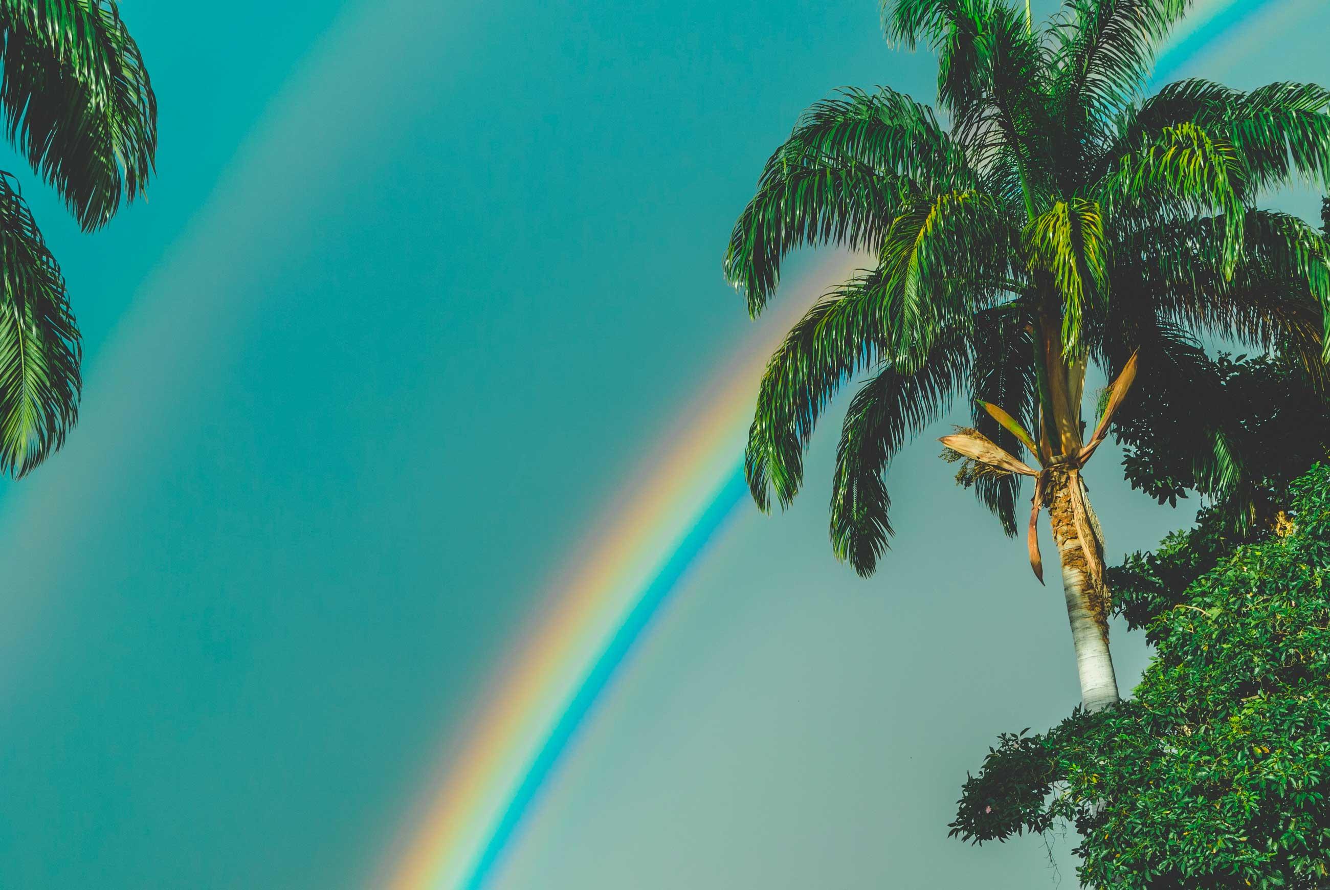 Le spectre de la lumière D65 est indispensable à la prise de couleur